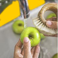 Alimentos com casca precisam ser limpos com escovinha ou bucha, específicas para esse uso, para que a sujeira superficial seja retirada por completo. Depois, basta enxaguar em água corrente.