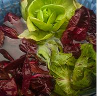 Verduras folhosas devem ser deixadas de molho por 15 minutos em solução clorada. Ao enxaguar, retire o excesso de água e seque para que não estraguem rapidamente. Para frutas e legumes, utilize papel.